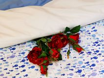 Красные розы на постельном белье стоковое фото rf