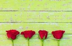 Красные розы на предпосылке древесной зелени для поздравительной открытки дня валентинки или матерей Стоковые Фотографии RF