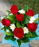 Красные розы. Стоковые Фото