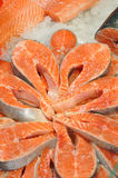 Красные рыбы Стоковое Изображение RF