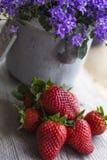 Красные свежие клубники на древесине с колокольчиком Стоковая Фотография RF