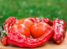 Красные свежие плодоовощи перца Стоковые Изображения RF