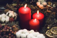 Красные свечи рождества с ягодами и кусками лимона Стоковое Изображение RF