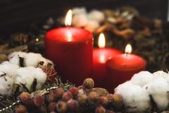 Красные свечи рождества с ягодами Стоковые Фотографии RF