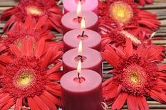 Красные свечки стоковые фотографии rf