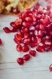 Красные семена гранатового дерева Стоковые Изображения RF