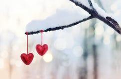 Красные сердца на снежной ветви дерева в зиме Концепция влюбленности сердца торжества дня валентинок праздников счастливая Стоковые Изображения