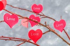 Красные сердца с влюбленностью надписи висят на ветвях на серой конкретной предпосылке изолированный вектор варианта вала знака п Стоковое Фото