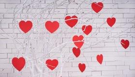 Красные сердца на ветви дерева Концепция влюбленности сердца торжества дня валентинок праздников счастливая Стоковая Фотография RF