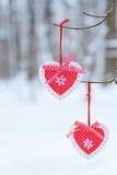 Красные сердца оформления вися на ветви thee Стоковая Фотография