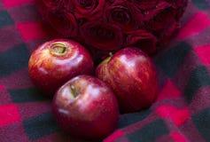 Красные сияющие яблоки и золотые обручальные кольца на одеяле красного цвета и черноты Стоковые Фото