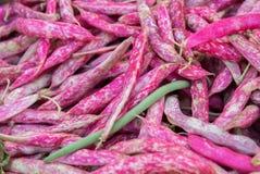 Красные сладостные горохи для продажи на местном уличном рынке Провансаль франк стоковая фотография rf