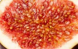 Красные смоквы, конец-вверх Стоковая Фотография