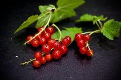 Красные смородины на черном фото еды шифера Стоковые Изображения