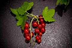 Красные смородины на черном фото еды шифера Стоковые Фото