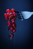 Красные смородины на вилке с медом Стоковая Фотография RF