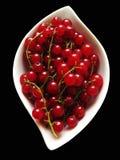 Красные смородины Стоковая Фотография RF