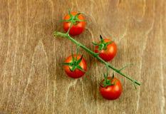 Красные томаты вишни на зеленой ветви на деревянной предпосылке Стоковые Изображения