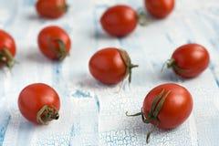 Красные томаты вишни Стоковое Изображение
