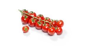 Красные томаты вишни Стоковые Фотографии RF