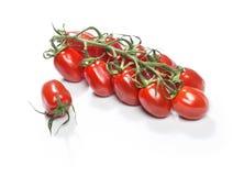 Красные томаты вишни Стоковые Изображения RF