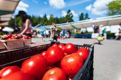 Красные томаты для продажи на рынке фермера стоковое фото rf