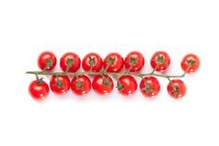 Красные томаты коктеиля на белом backgrond Стоковое фото RF