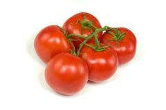 Красные томаты стержня Стоковая Фотография