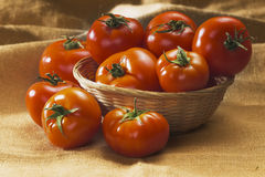 красные томаты стоковое фото rf