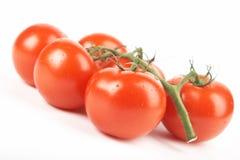 красные томаты Стоковые Фото