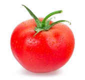 Красные томаты стоковые изображения