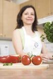 красные томаты Стоковая Фотография RF