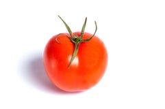 красные томаты Стоковые Изображения RF