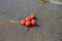 Красные томбуи в открытом море на солнечный день стоковые изображения