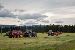 Красные тракторы и деятельность сельско-хозяйственной техники для того чтобы сделать сено в лете стоковое фото rf