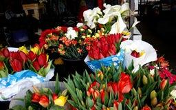 Красные тюльпаны и белые callas на рынке Bayloni в Белграде стоковая фотография rf