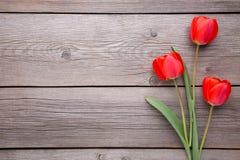 Красные тюльпаны на серой деревянной предпосылке стоковые изображения