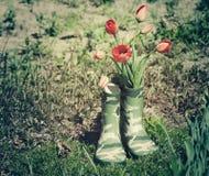 Красные тюльпаны в зеленых резиновых ботинках для детей в саде на солнечный весенний день Стоковые Изображения