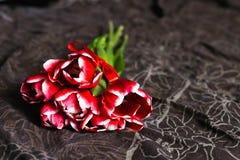 Красные тюльпаны лежа на коричневом цвете кровати стоковая фотография