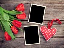 Красные тюльпаны, пустые рамки фото и сердце Стоковое фото RF