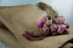 Красные луки с чилями на мешке Стоковые Фото