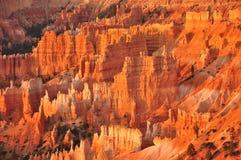 Панорама каньона Юта Bryce, США Стоковые Изображения RF