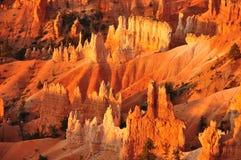 Панорама каньона Юта США Bryce Стоковая Фотография