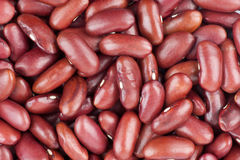 Красные фасоли Стоковое Фото