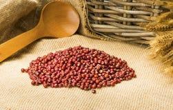Красные фасоли на мешковине с пшеницей Стоковые Фотографии RF