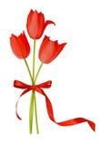 Красные цветки и смычок тюльпана Стоковая Фотография RF