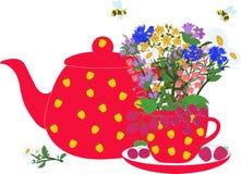 Красные чайник и чашка с травами и ягодами Стоковое Изображение RF