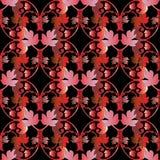 Красные черные барочные орнаменты Стоковое фото RF