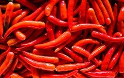 Красные чили Стоковые Фотографии RF