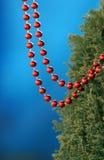 Красные шарики ожерелья bijoux Стоковое фото RF